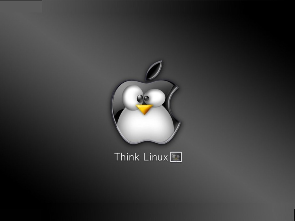 Think-Linux-001